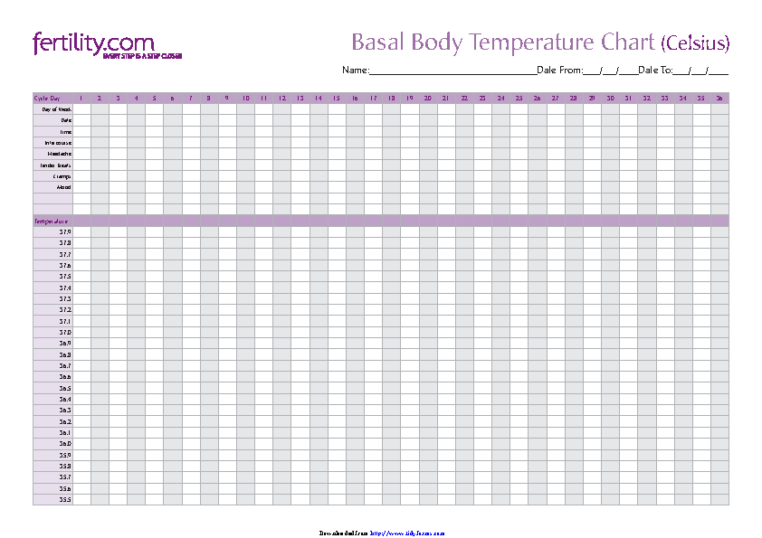 Basal Body Temperature Chart 3