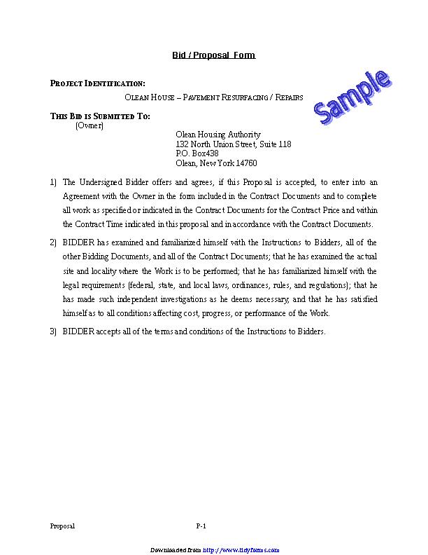 Bid Proposal Template 2