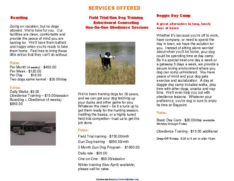 Brochure Template 3