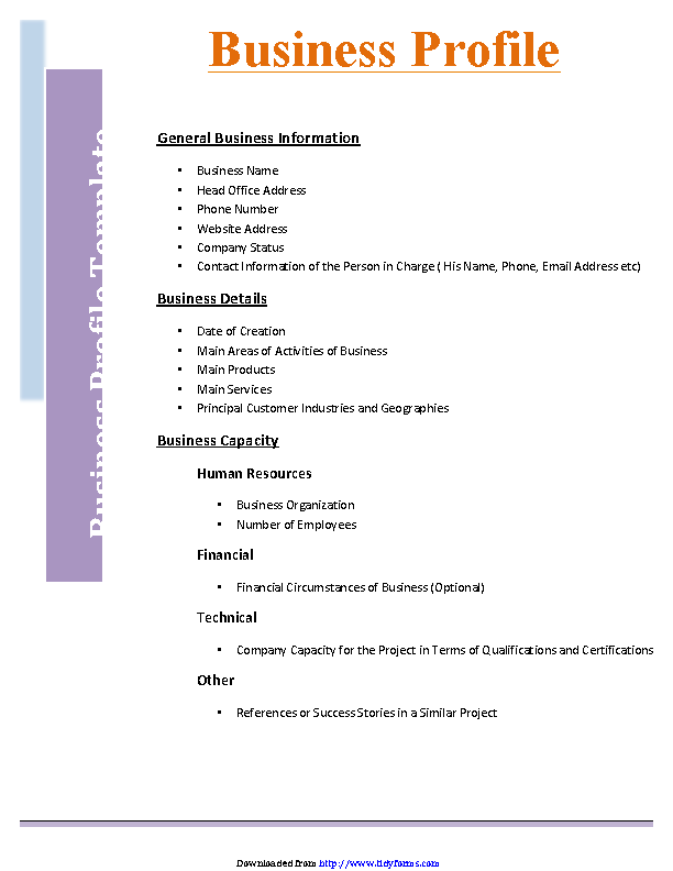 Business Profile Template 2