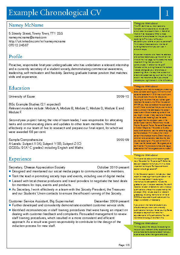 Chronological Cv Example