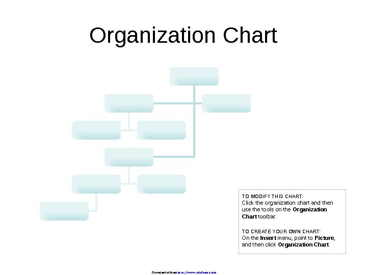 Company Organization Chart 1