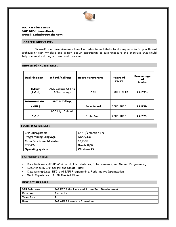 Cv Format For A Sap Consultant