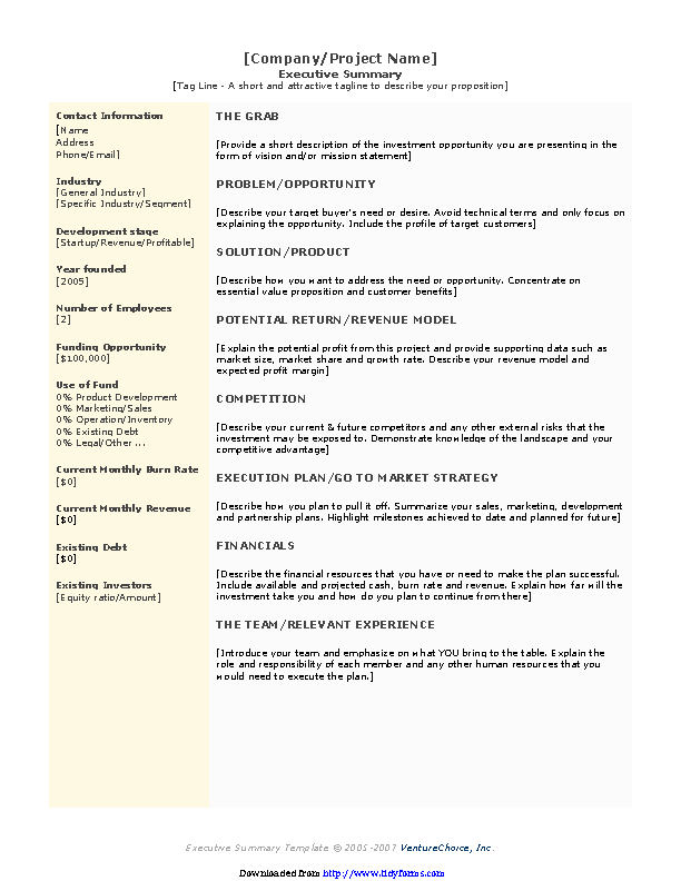 Executive Summary Template 3