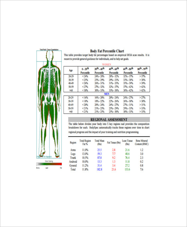 Ideal Body Fat Measurement For Gender