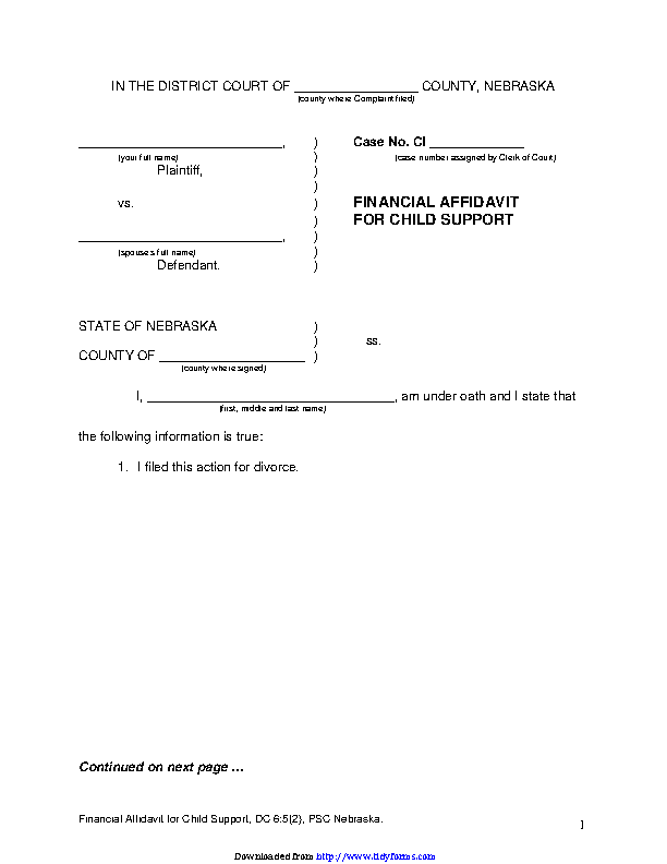 Nebraska Financial Affidavit For Child Support Form