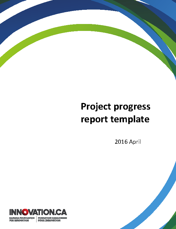 Project Summary Report Template