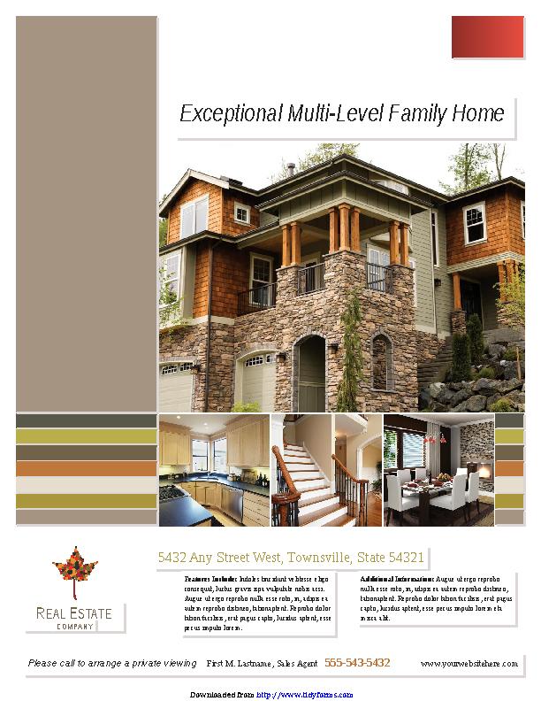 Real Estate Flyer 1