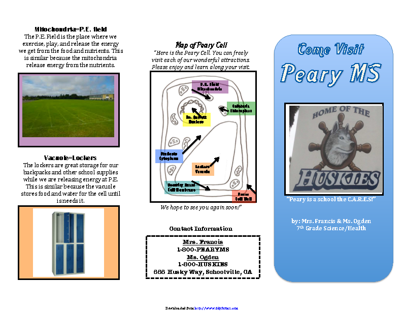 Travel Brochure Example 2